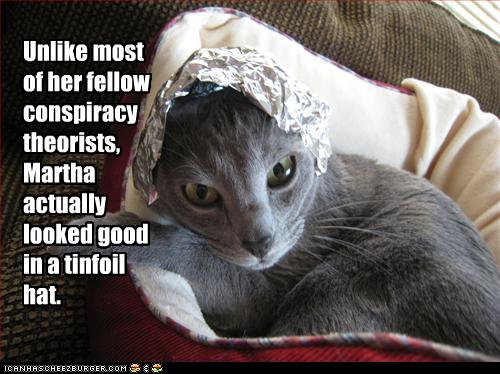 tinfoil-cat