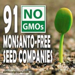 tn_11360_non-gmo-monsanto-free-seed-companies-1366875553